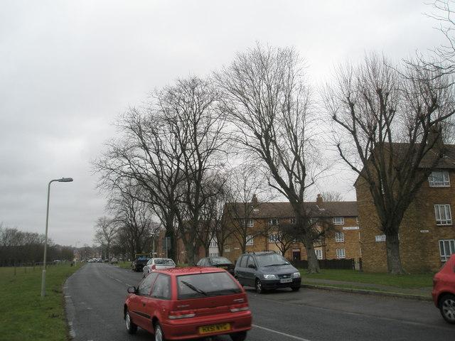Stockheath Lane
