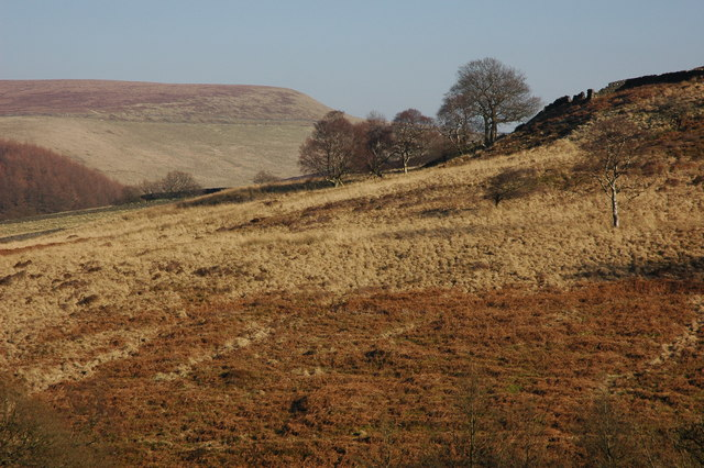 Moorland in the Goyt Valley