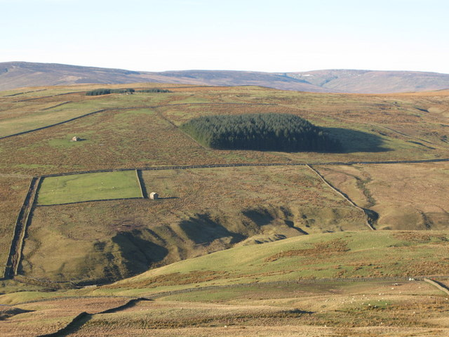 The cleugh of Middlehope Burn