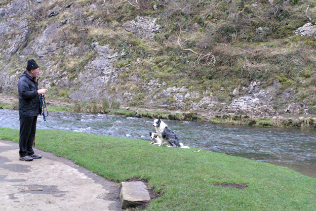 Dog training in Dovedale