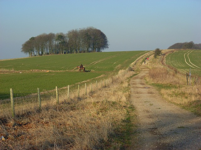 The Ridgeway, Hackpen Hill