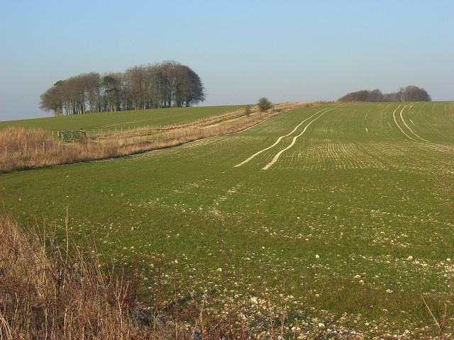 Farmland, Hackpen Hill