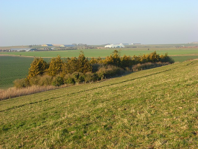 Copse and farmland, Uffcott