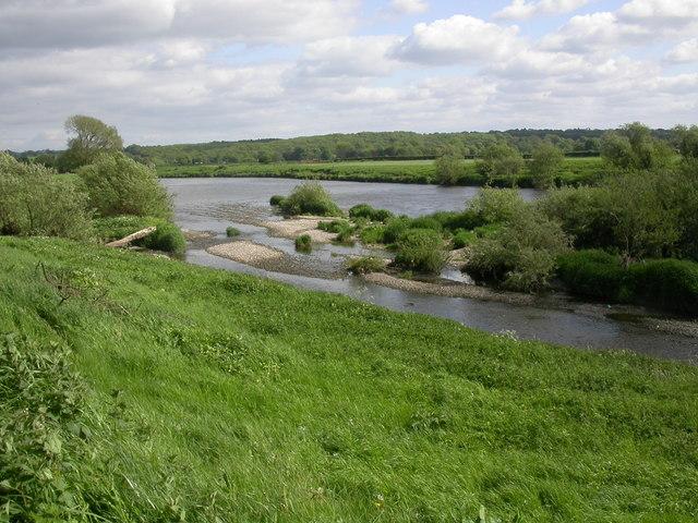 River Ribble near Elston
