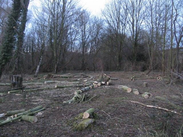 Clare College Conservation Area