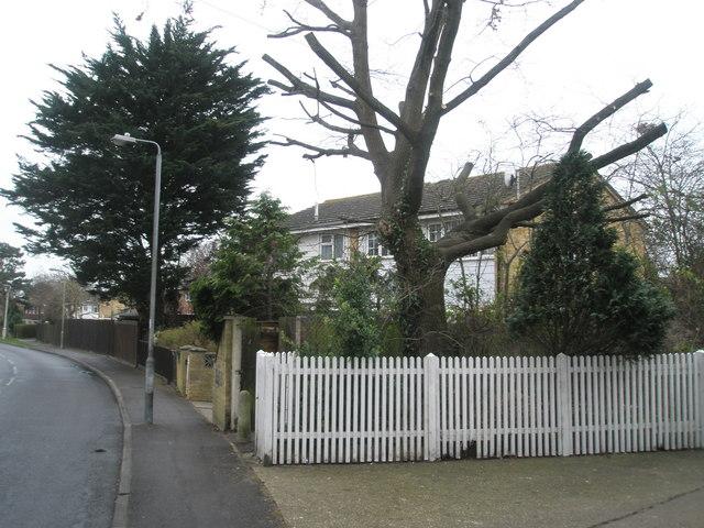 Houses in Stockheath Lane