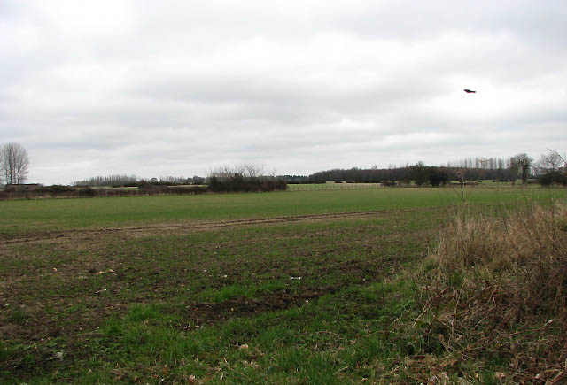 View across fields towards disused airfield