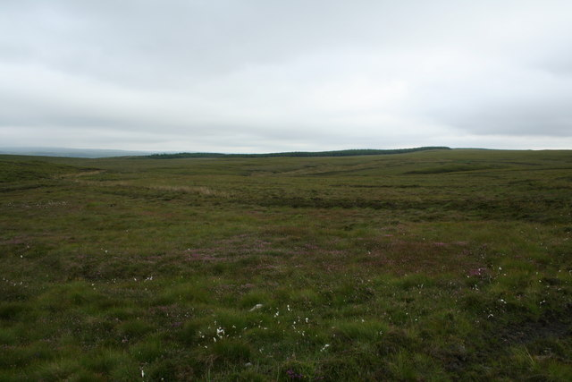 Empty moorland south of Melvich