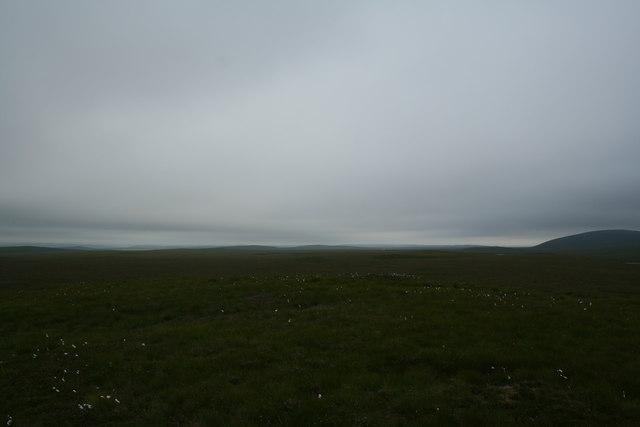 Looking south across peatbog