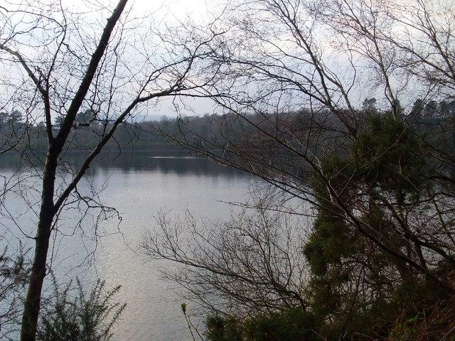 Through the trees by Mugdock Reservoir