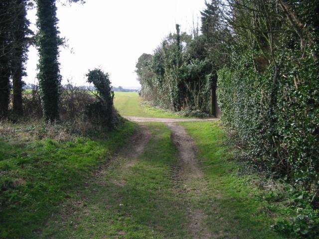 Footpath crossroads on Sutton Down