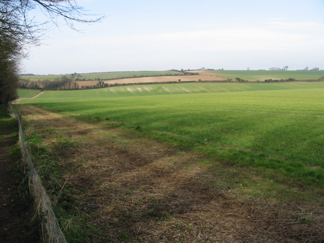 View NW across Sutton Downs