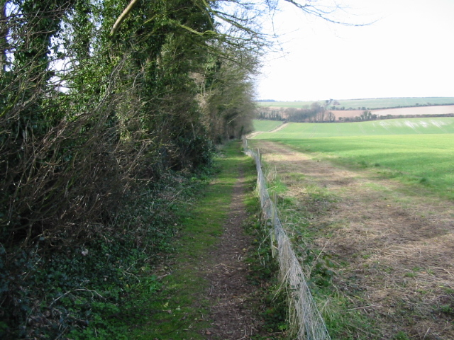 Footpath towards East Studdal across Sutton Downs