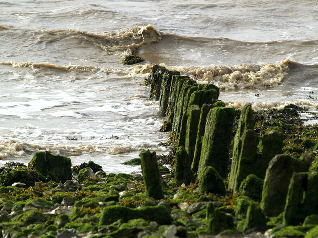 Humber Foreshore Posts