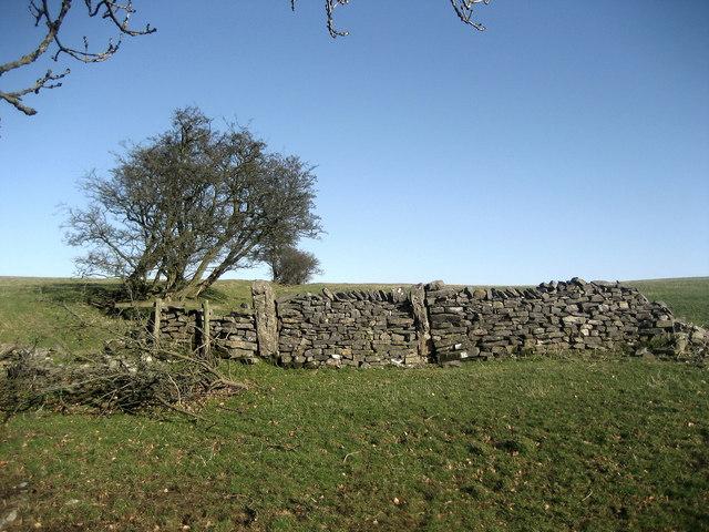 Old Wall near Dan Clough