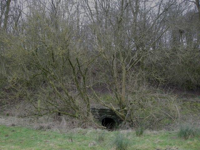 Braunston-Disused Railway