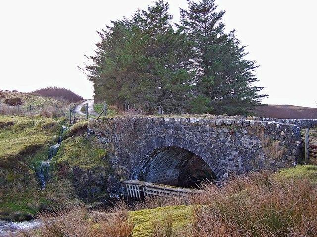 Bridge over Roskhill River