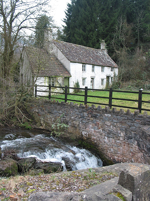 Dilapidated cottage by the Angiddy stream, Tintern