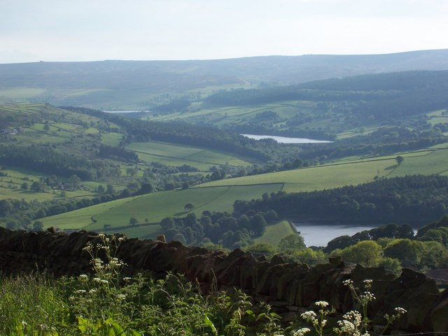 Summer view of Agden, Dale Dike and Strines Reservoirs taken from above High Bradfield