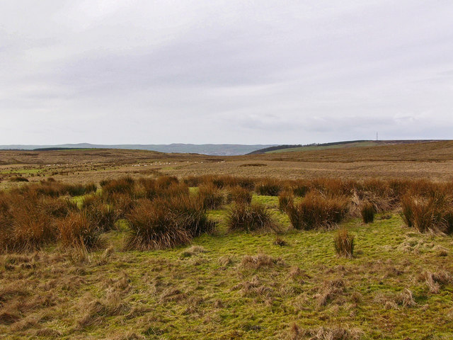 Moorland northeast of Little Tongue