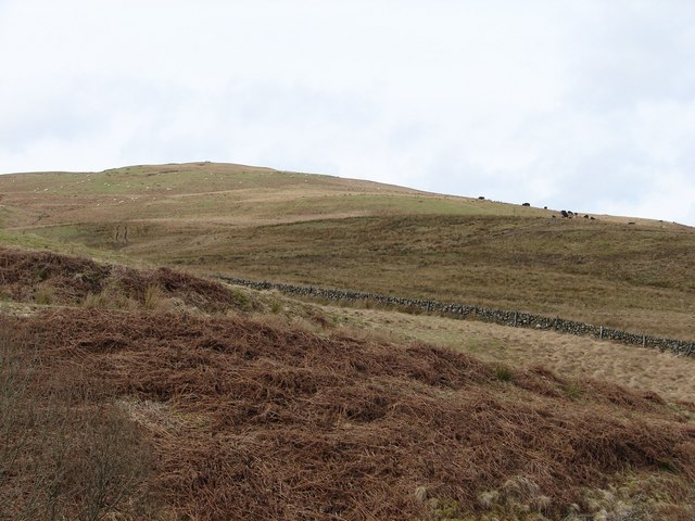Knockman Hill, Corriedoo