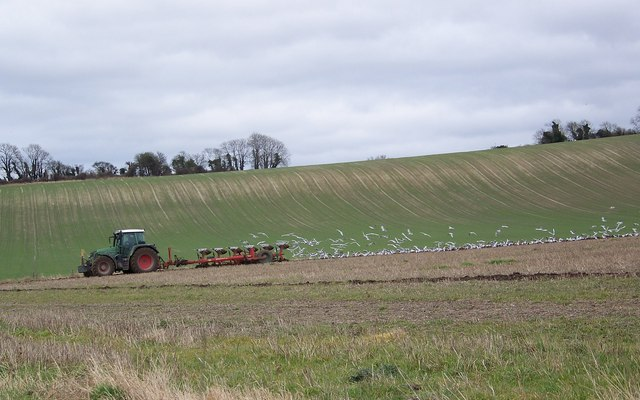 Following the plough, Faulston Farm, Bishopstone