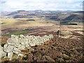 NO1760 : North east ridge of Meall Mòr : Week 8