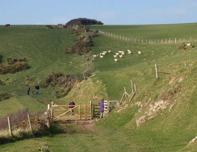 Negotiating a gate on the coast path