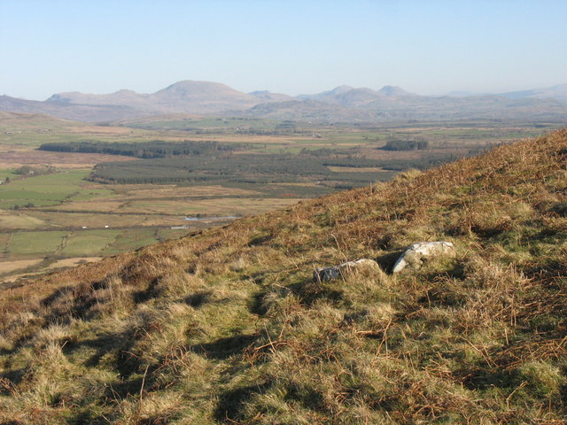Rough grazing land on Mynydd Carnguwch