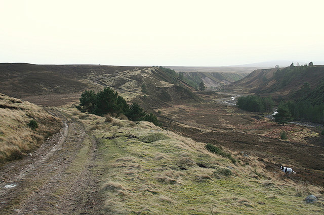 Moorland track to the east of the Riereach Burn