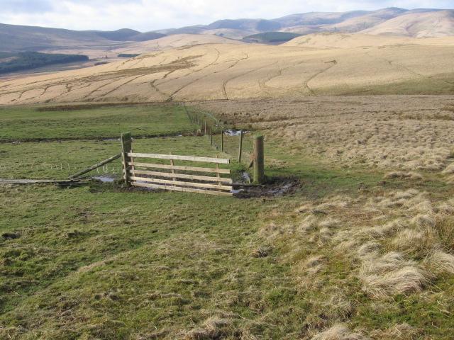 Wintercleuch Fell hillside