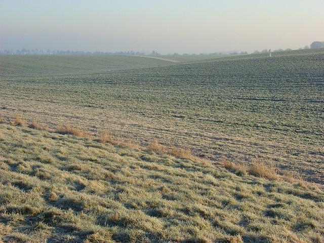 Farmland, Lockinge