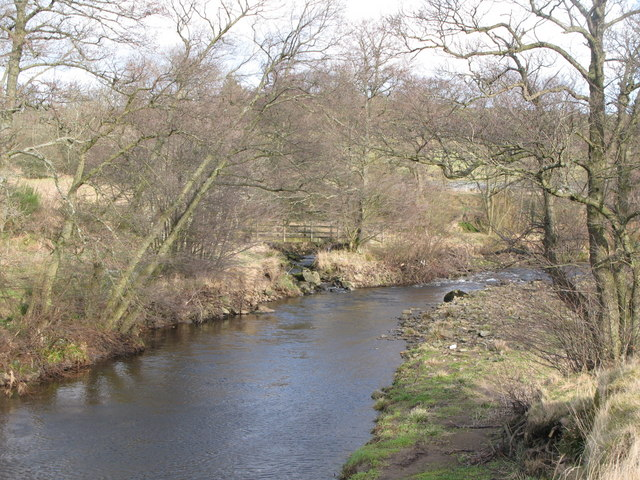 The confluence of Catton Burn and the River East Allen (2)