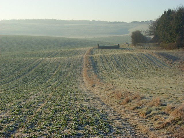 Farmland and gallop, Lockinge
