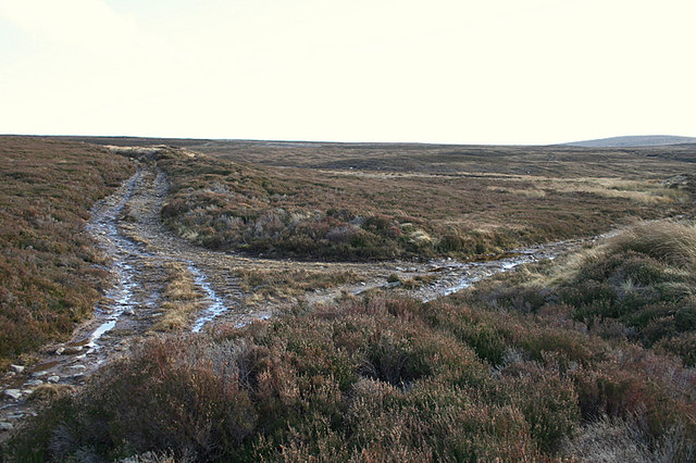 Track junction on the moorland track east of Riereach Burn