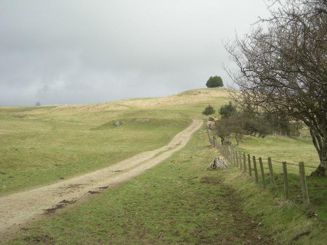 Ascending Furrow Hill