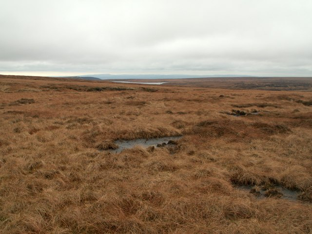 Laddow Moss looking to Chew Reservoir