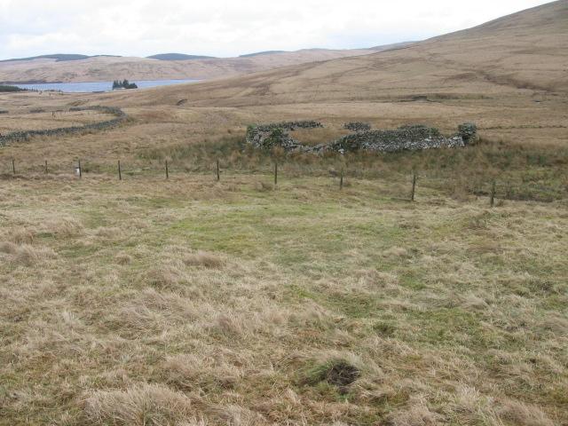 Sheepfold near Kirkhope Cleuch