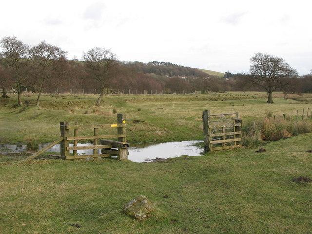 Path across Bishopfield Haugh