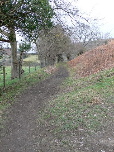Footpath to Castell Dinas Brân
