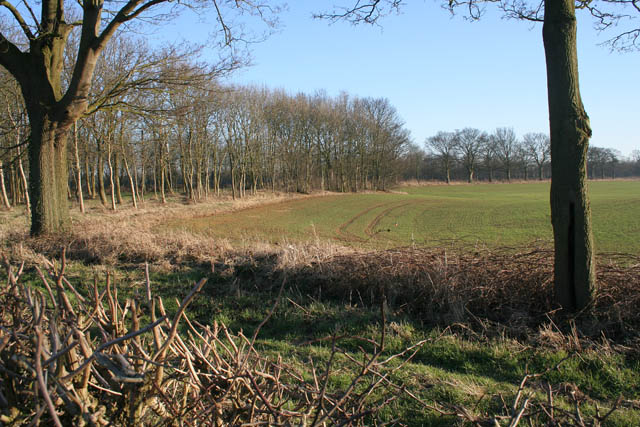 Farmland off Hall Road