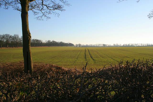 Farmland near Buckminster