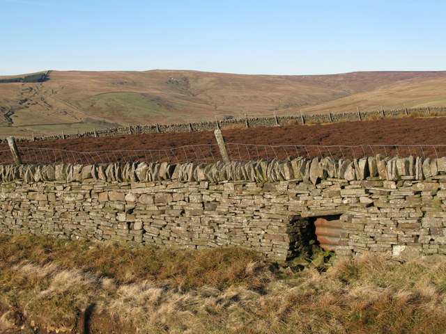 (Blocked up) sheephole in drystone wall on Red Road