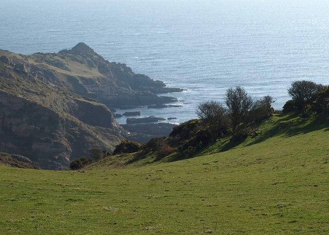 Coastal slope above East Hollicombes