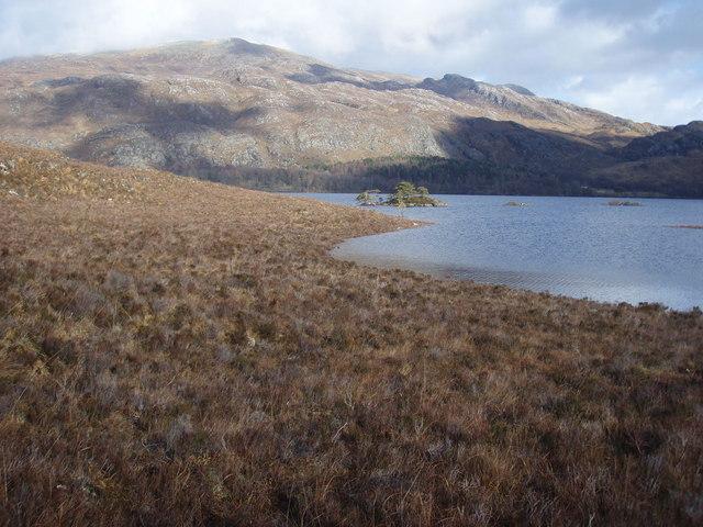 Loch Maree Coastline