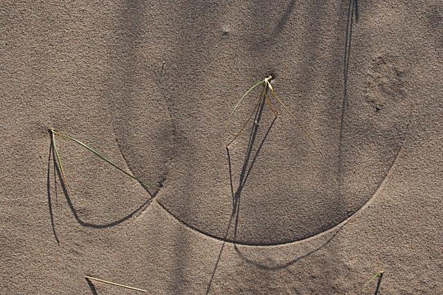 Sand Arc