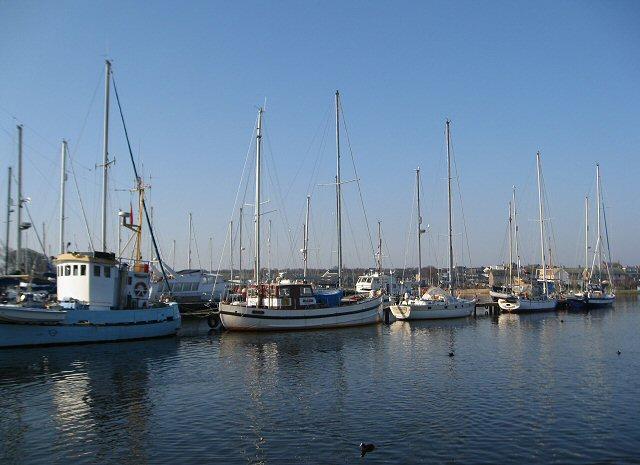 Boats moored at the Marina