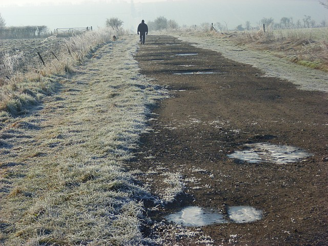 Farm track, Lockinge
