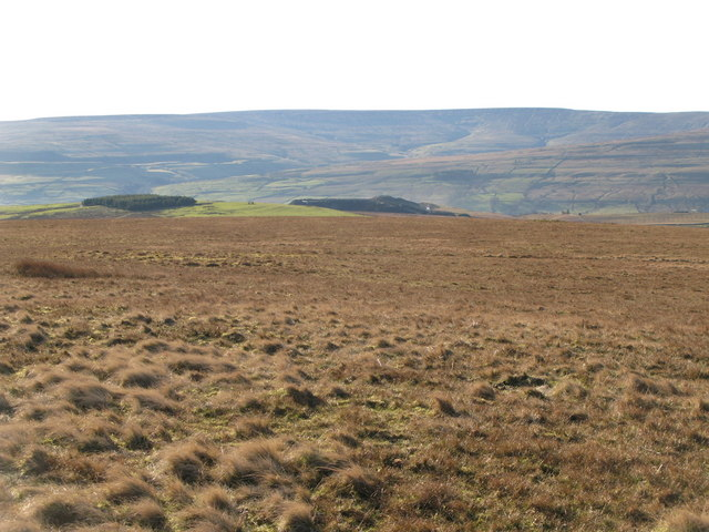 Northgate Fell (2)