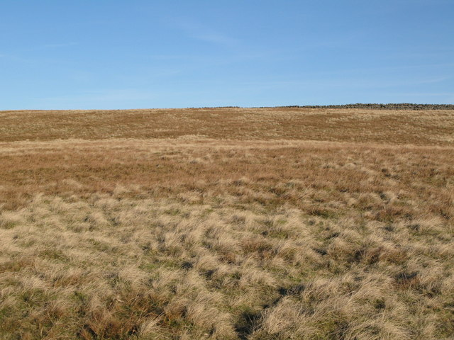 Moorland below Greenmere Head
